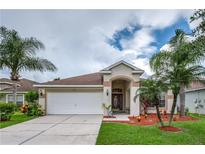 View 11316 Cypress Reserve Dr Tampa FL