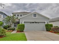 View 8006 Canterbury Lake Blvd Tampa FL