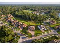 View 1032 Stella Vara Dr Lutz FL