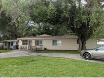 View 8434 N Grady Ave Tampa FL