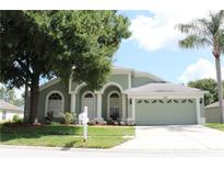 View 22451 Laureldale Dr Lutz FL