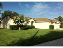 View 22200 Magnolia Trace Blvd Lutz FL