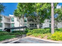 View 3325 Bayshore Blvd # D18 Tampa FL
