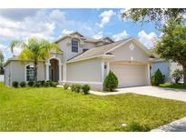 View 8106 Carriage Pointe Dr Gibsonton FL