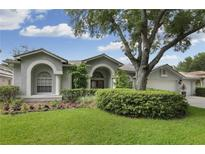 View 9353 Wellington Park Cir Tampa FL