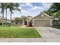 View 22852 Sterling Manor Loop Lutz FL
