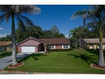 View 11418 Country Oaks Dr Tampa FL