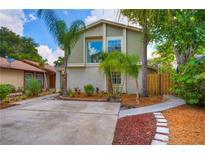 View 10418 Rosemount Dr Tampa FL