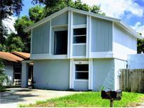 View 10414 Rosemount Dr Tampa FL