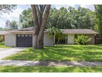 View 14115 Eastland Ln Tampa FL