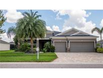 View 11821 Newberry Grove Loop Riverview FL