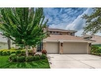 View 10415 Greenmont Dr Tampa FL