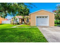 View 5707 Kneeland Ln Tampa FL