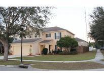 View 10518 Boyette Creek Blvd Riverview FL