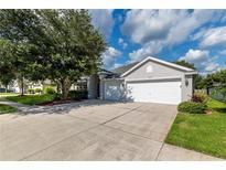 View 10535 San Travaso Dr Tampa FL