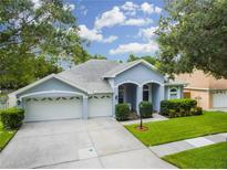View 10008 Bennington Dr Tampa FL