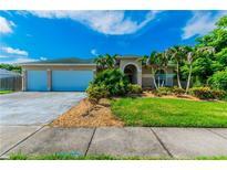 View 1036 Rosetree Ln Tarpon Springs FL