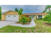 View 1011 Spindle Palm Way Apollo Beach FL