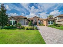 View 9124 Tillinghast Dr Tampa FL