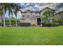 View 10732 Cory Lake Dr Tampa FL