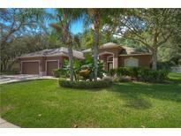 View 15520 Carrillon Estates Blvd Tampa FL