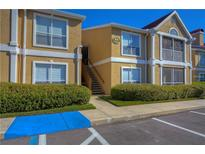 View 9481 Highland Oak Dr # 803 Tampa FL