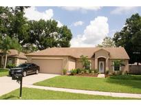 View 14815 Redcliff Dr Tampa FL