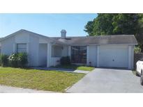 View 9208 Maybury Ct Tampa FL