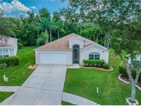 View 5416 Seattle Slew Dr Wesley Chapel FL