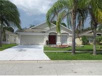 View 10518 Egret Haven Ln Riverview FL