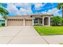 View 14819 Coral Berry Dr Tampa FL