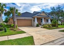 View 8818 Citrus Palm Dr Tampa FL