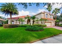 View 17206 Lakay Pl Tampa FL
