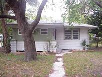 View 1002 E Powhatan Ave Tampa FL