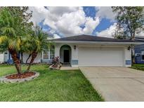 View 11423 Glenmont Dr Tampa FL