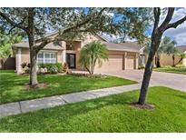 View 8264 Swann Hollow Dr Tampa FL