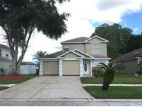 View 8615 Manassas Rd Tampa FL