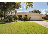 View 13917 Middle Park Dr Tampa FL