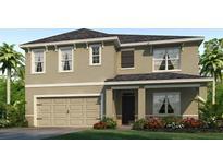 View 9515 Sunstone Blvd Thonotosassa FL