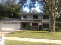 View 4510 Viewridge Way Tampa FL