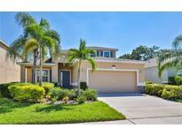View 12020 Legacy Bright St Riverview FL