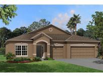 View 11423 Carlton Fields Dr Riverview FL