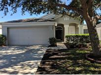 View 12409 Cedarfield Dr Riverview FL