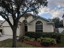 View 12237 Bishopsford Dr Tampa FL