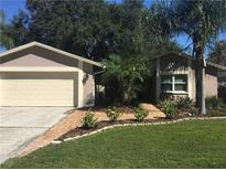 View 15707 Country Lake Dr Tampa FL