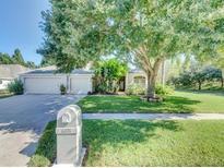 View 6101 Savoy Cir Lutz FL