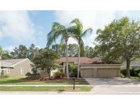 View 3766 Pendlebury Dr Palm Harbor FL