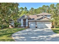 View 14725 Coral Berry Dr Tampa FL