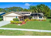 View 495 Hickorynut Ave Oldsmar FL
