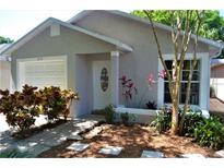 View 2752 Braham Ct Palm Harbor FL